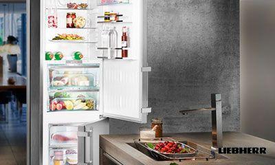 Bosch Kühlschrank Holiday Funktion : Mehr als nur ein kühlschrank bluperformance ist die neue